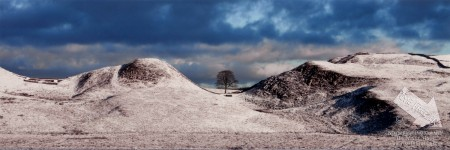 Sycamore Gap Hadrians Wall Snow