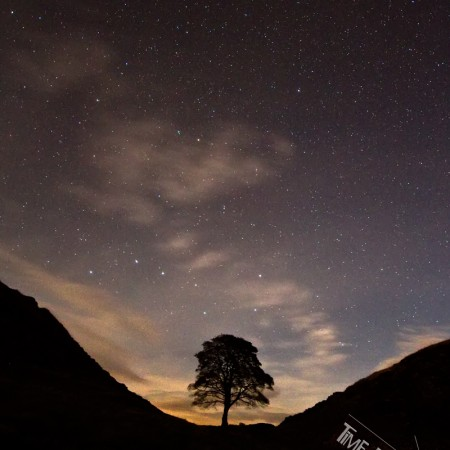 Sycamore Gap at night
