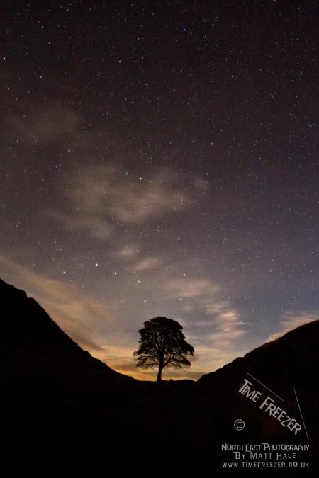 Sycamore Gap at night