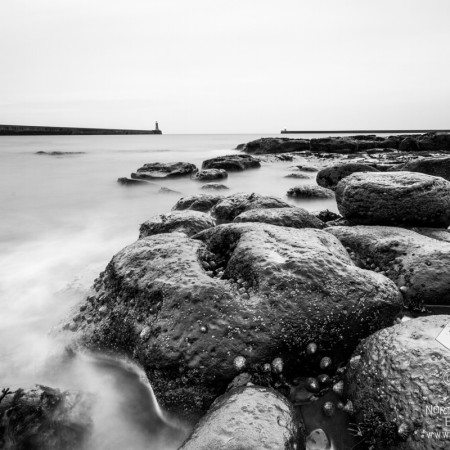 Mouth of the Tyne Photo