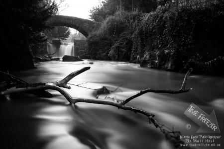 Jesmond Dene Waterfall Photo