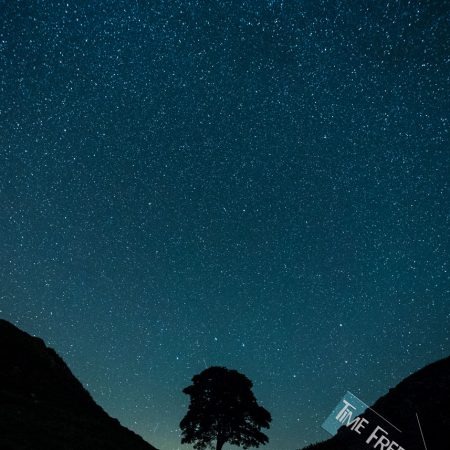 Night Shot of The Robin Hood Tree