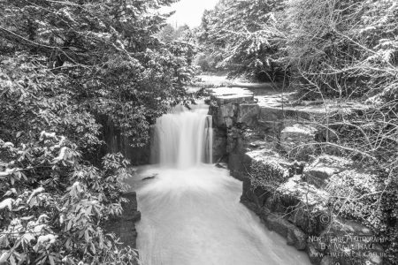 Snow In Jesmond Dene Newcastle