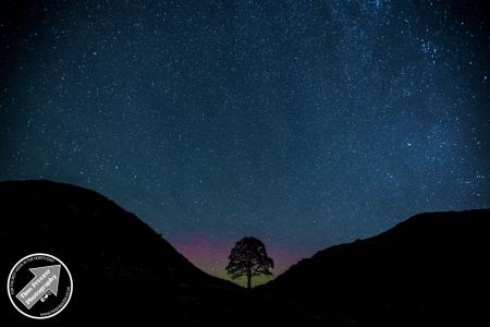 Aurora Borealis Northumberland