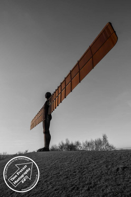 Black and white with colour angel of the north photo