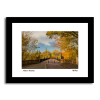 Framed Picture of the Armstrong Bridge in Autumn